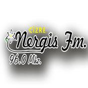 Cizre Nergis FM