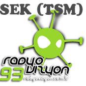 Vizyon Sek